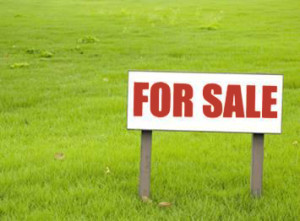 Market Is Ripe for Selling Land